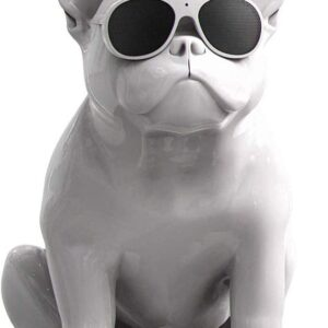 CASSA BLUETOOTH BULLDOG